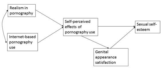 the effects of pornography within society